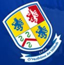 Navan O'Mahonys Gaelic Football & Hurling Club Logo